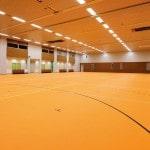 Pavimenti e rivestimenti Virag: pavimenti sportivi