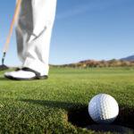 VISAGARDEN tappeto erboso campo golf